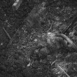 Fosas clandestinas: del estado del terror al Estado del silencio