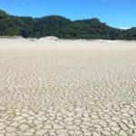85% de sequía en lagunas de la Selva Lacandona