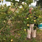 El Edén Orgánico: guardianas de la tierra, las semillas y la vida