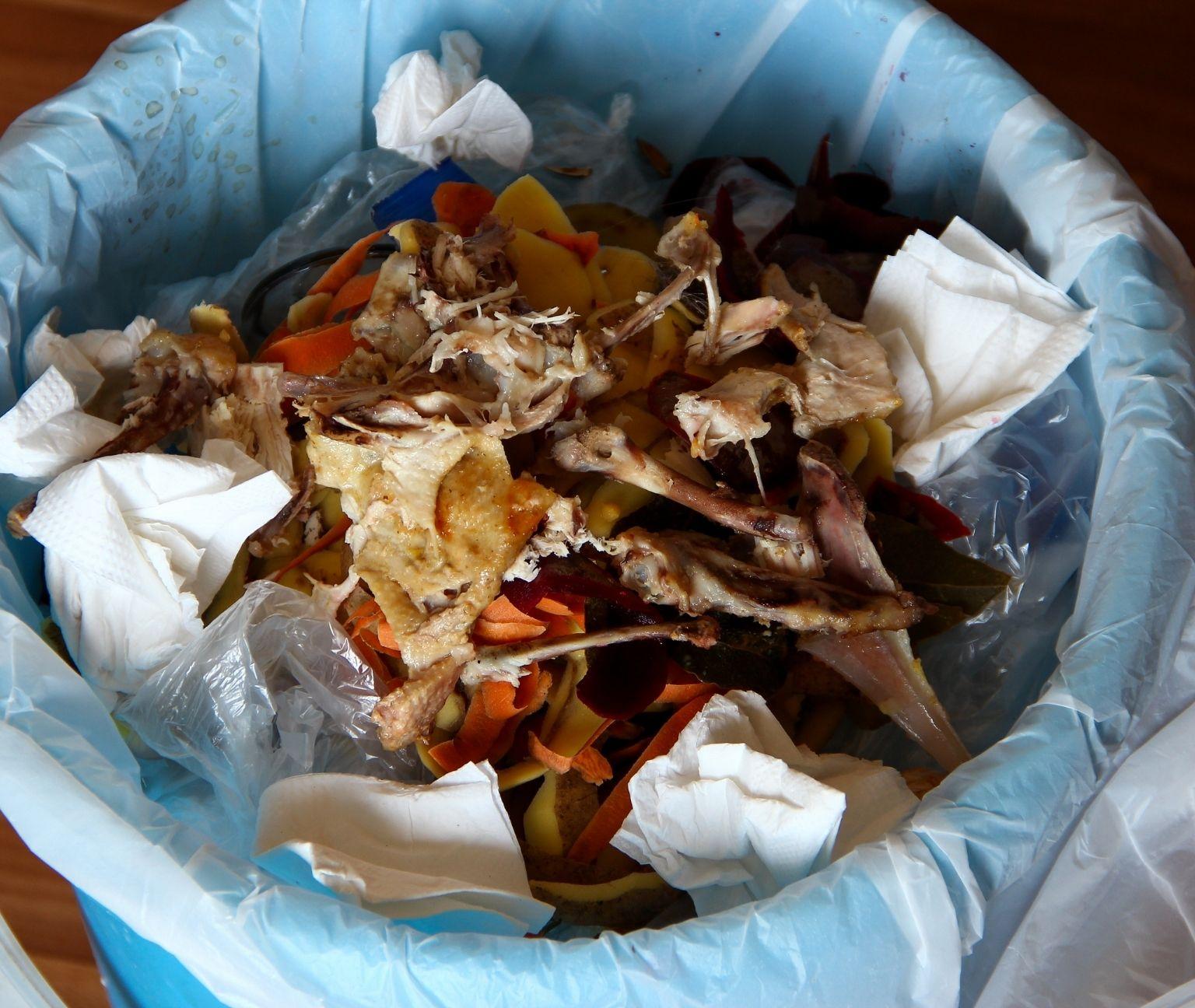 De comida a basura: los impactos de las 20 millones de toneladas de alimentos que tiramos al año