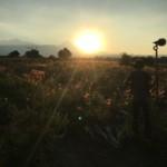 Voces del origen: proyecto que busca conservar la cultura de los pueblos originarios en México